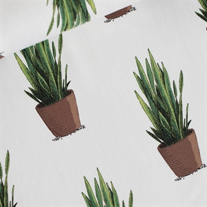 Picture of Sansevieria - French Terry - Gebroken Wit